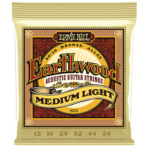 Ernie Ball Earthwood EB2003 012-054