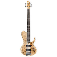 Ibanez BTB845SC-NTL Terra Firma Single Cut « E-Bass