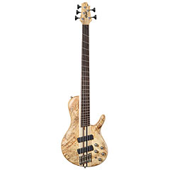 Cort A5 Plus SCMS OPN « E-Bass
